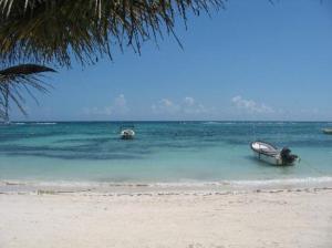 Akumal Beach (5)